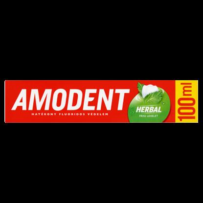 Kép Amodent Herbal fogkrém 100 ml